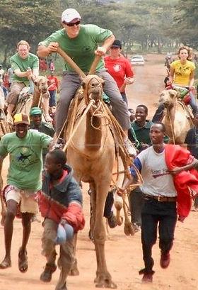 edward-nevraumont-marketing-bs-camel.jpg