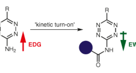 New Synlett Paper: Acylation-Mediated 'Kinetic Turn-On' of 3-Amino-1,2,4,5-tetrazines