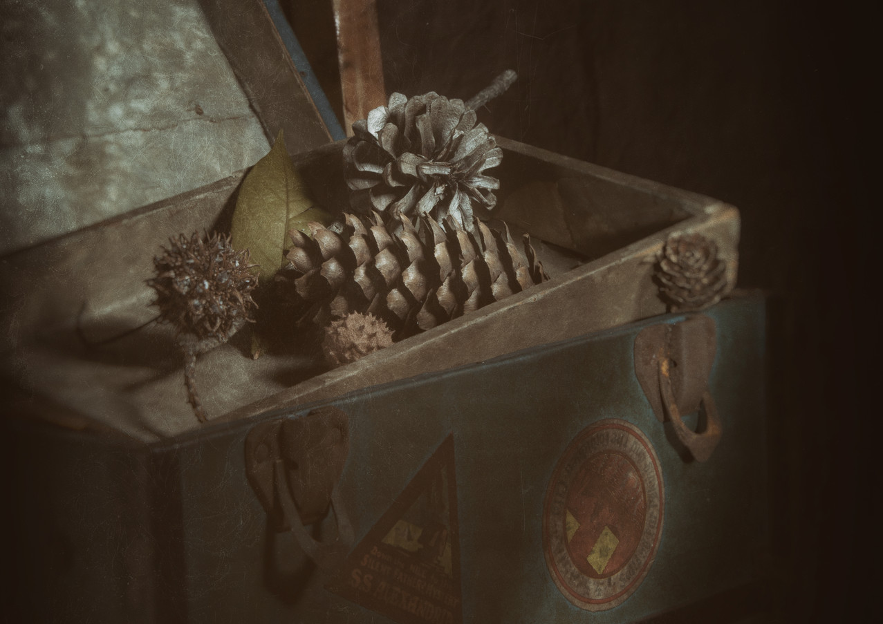 Vintage Chest with Pine Cones