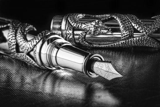 Snake Pen in Black and White.jpg