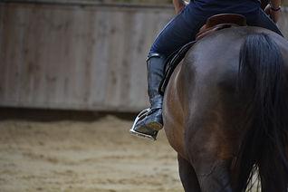 Cours d'équitation 37