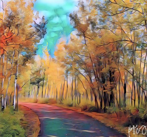Whitefish bike path art 2