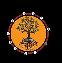 vue_aérienne_arbre_vectorisée_racines_