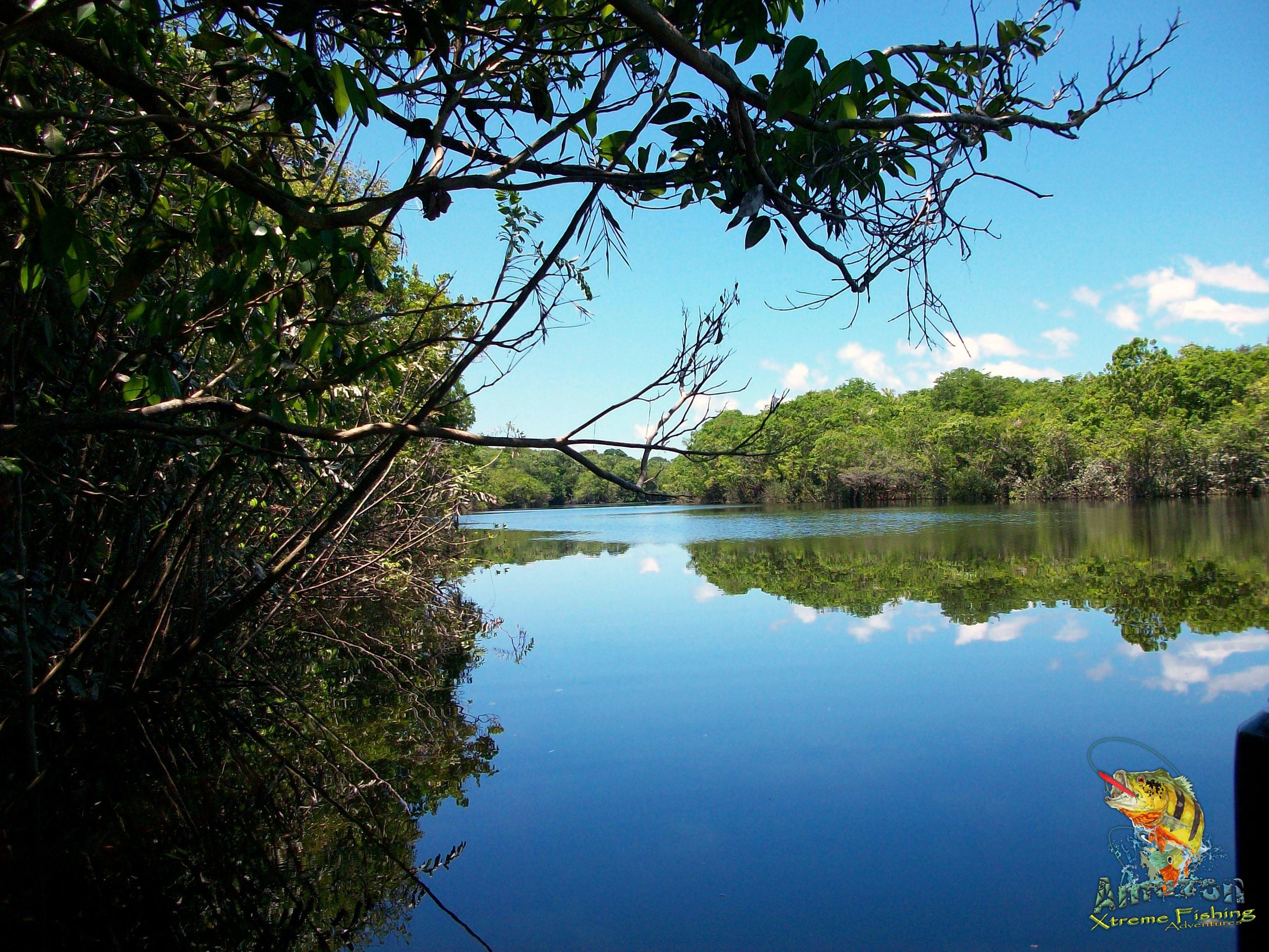 Life on the Rio Negro