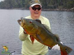 Peacock Bass Fishing - Amazon Xtreme