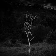 Fernanda Preto | Sem título (tiragem 1/3) | Série Testes de casa | Intervenção e fotografia digital impressa em papel de algodão | 44x61cm