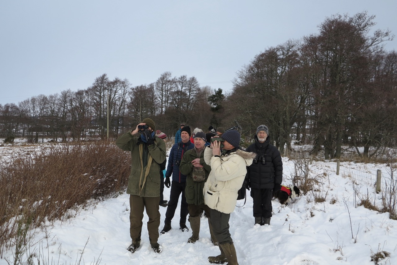 Winter bird watching at one of our fields