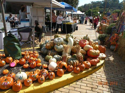 CSFF Pumpkins!.jpg