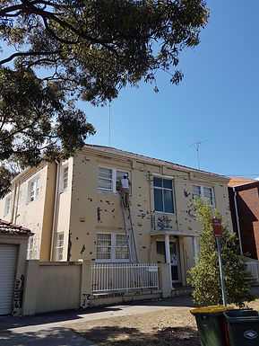 Kingsford Exterior Painting.