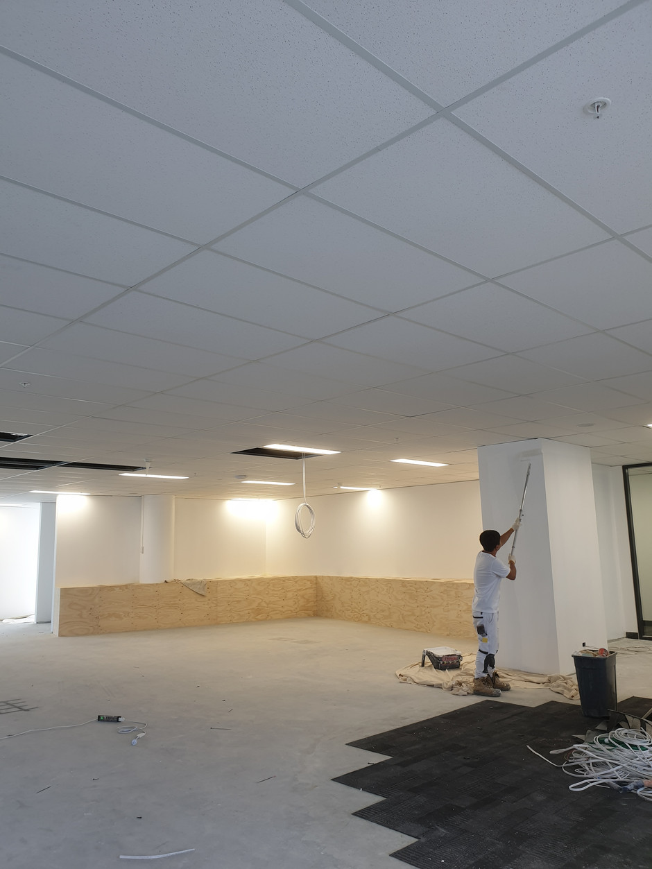 Macquarie Park Office Painting