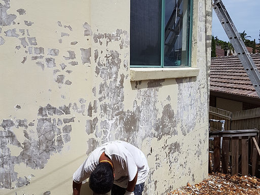 Exterior Preparatory Work