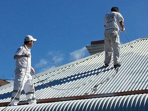 Roof Painting in Blakehurst