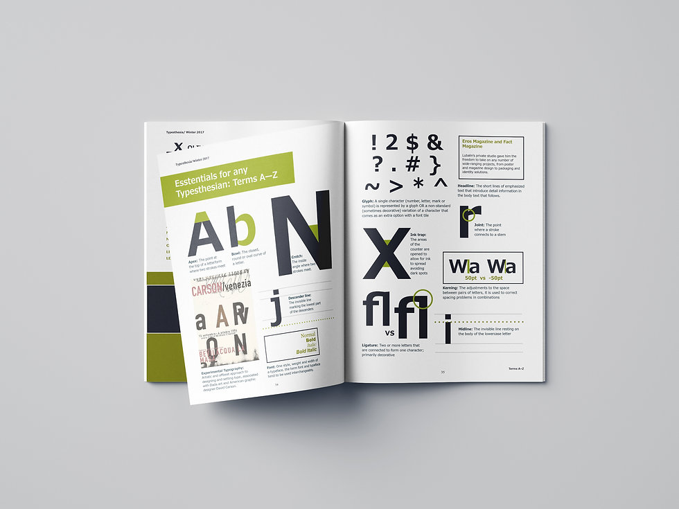 type-mag-case-03.jpg