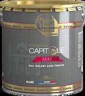 Innova Capitole Premium Mat mat à plafond  peinture glycéro peinture batiment peinture professionnelle produit pro à plafond