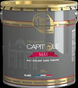 Innova Capitole premium mat à plafond chaulé peinture glycéro peinture professionnelle batiment