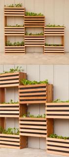 Modern Tiered Crate Garden