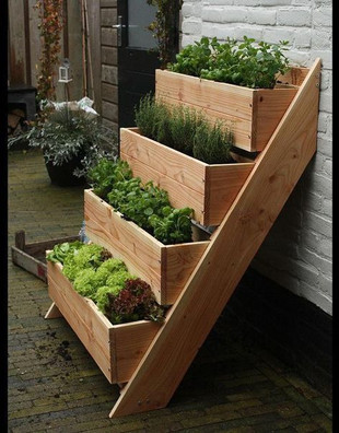 Tiered Garden Boxes