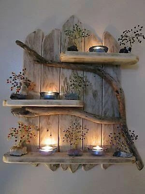 Live Edge & Branch Candle Holder with Succelents