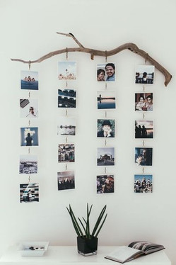 Branch Photo Display