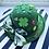 Thumbnail: St. Patty's Day Hat