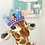 Thumbnail: Birthday Crown