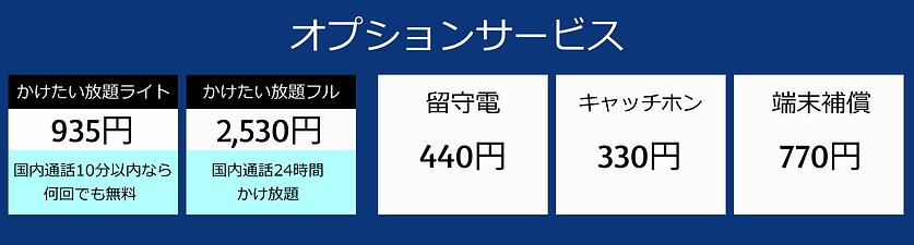 オプション青.png