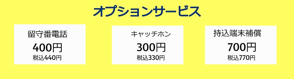 オプション黄 (1).png