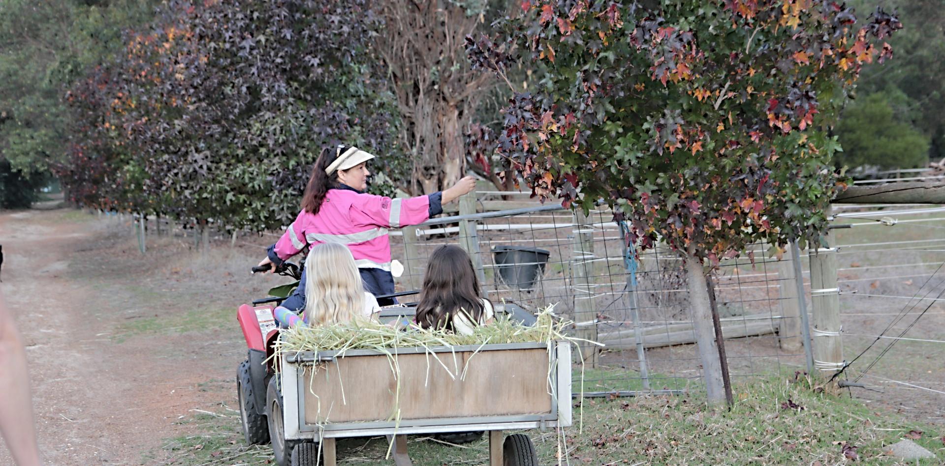 Autumn hay rides!
