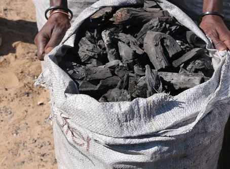How Namibian charcoal workers pay a high price for the cheap British barbecue.