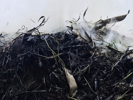 How to Enrich Biochar before using in your garden.