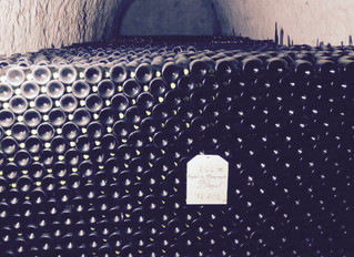"""Wine Questions you always wanted to ask """"Why do we cellar wines and how long can they be cellared fo"""