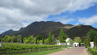 Wine Tours Bright Victoria