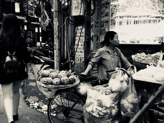 Vietnam metropoli risciò
