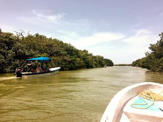 Rio Lagartos tour Messico