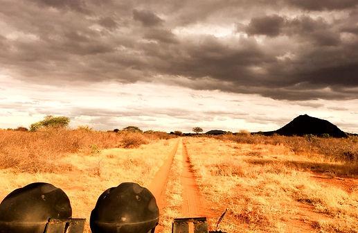 Safari Tsavo Est Savana Kenya