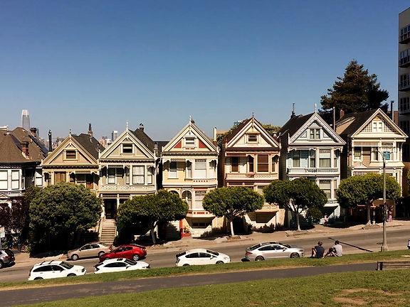 California San Francisco Painted Ladies