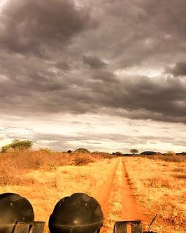 Kenya Safari Tsavo Est