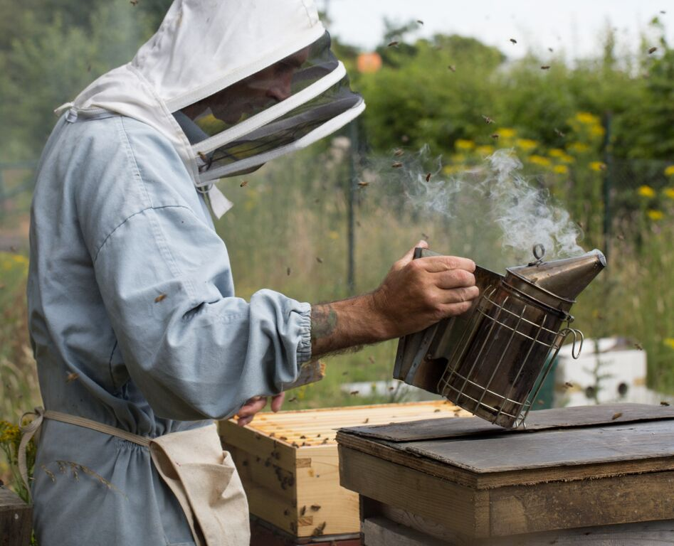 No. 38 Beekeeper at work