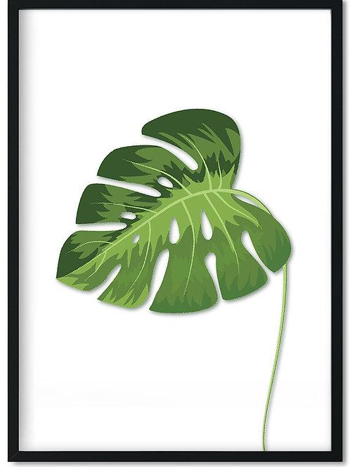 Plakat med grønt Monstera blad indrammet i sort ramme