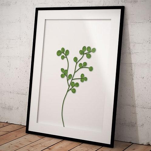 Billede af grøn Eucalyptus gren 50 x 70 cm, i sort ramme