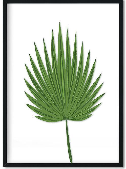 Plakat med grønt palmeblad indrammet i sort ramme