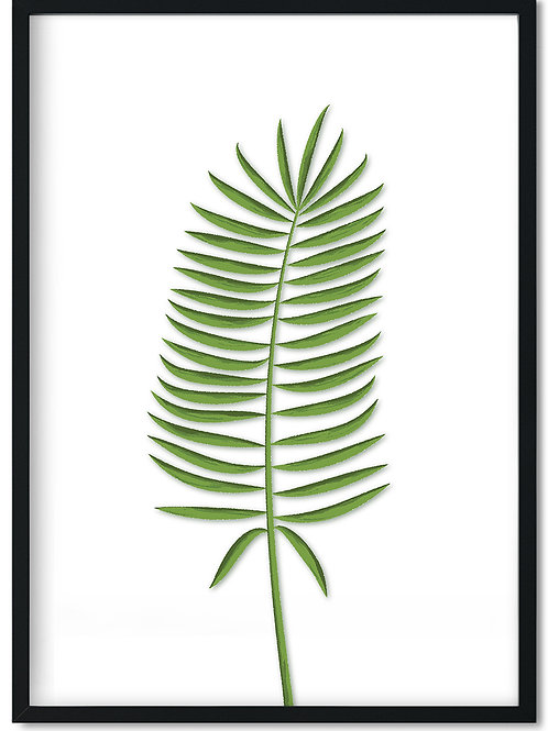 Plakat med bregne blad i sort ramme