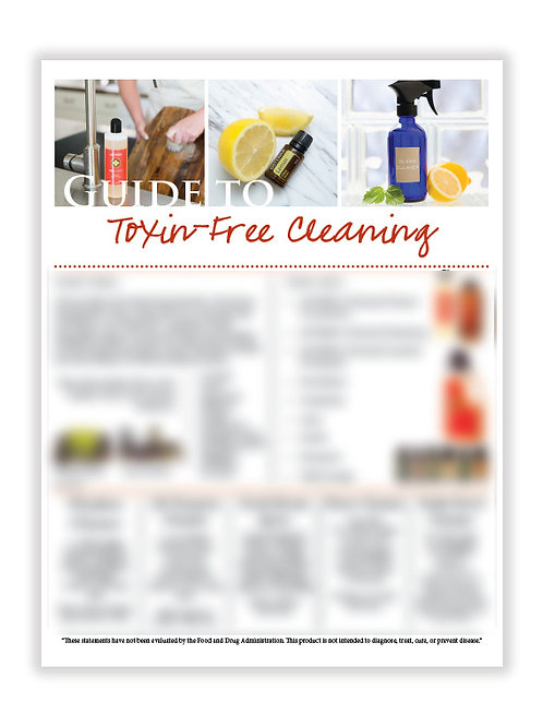 US Toxin-Free Cleaning (8.5X11 size)