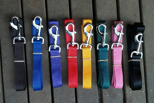 Webbing dog leads