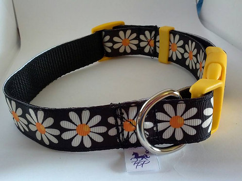 Black and white daisy adjustable dog collars