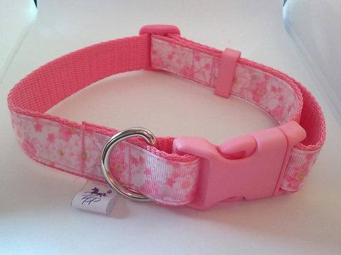 Pink cherry blossom adjustable webbing dog collars
