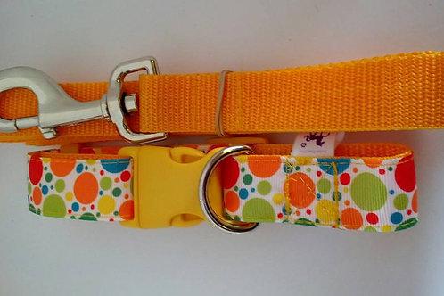 Citrus spot adjustable webbing dog collar and lead sets