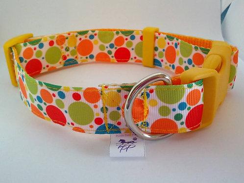 Citrus spot adjustable webbing dog collar