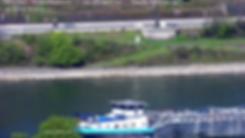 vlcsnap-2019-05-01-08h40m40s078.png