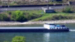 vlcsnap-2019-05-01-08h43m40s955.png